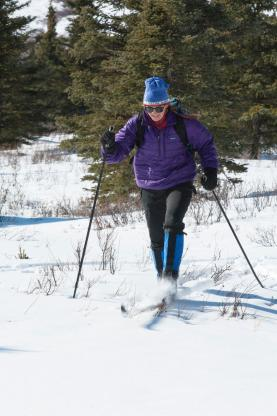 Cross Country Skiing in the Forest - a health benefit of Green Infrastructure and WinterCity YXE