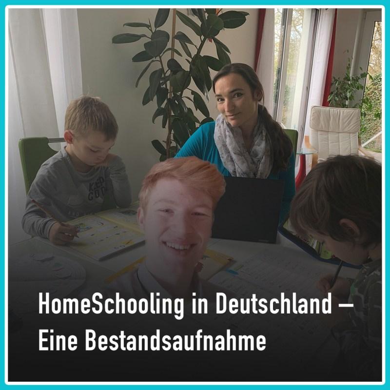 SRTBNHCKR 2.1 Homeschooling in Deutschland