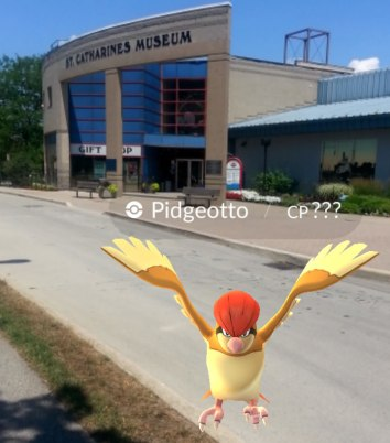 pidgeotto outside museum