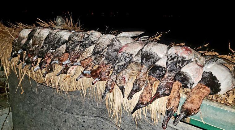 131314762 224193962414397 3439159484222988291 n 2 St. Clair Duck Hunts