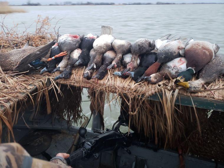139346541 192704809266886 7623577620144650953 n 2 St. Clair Duck Hunts