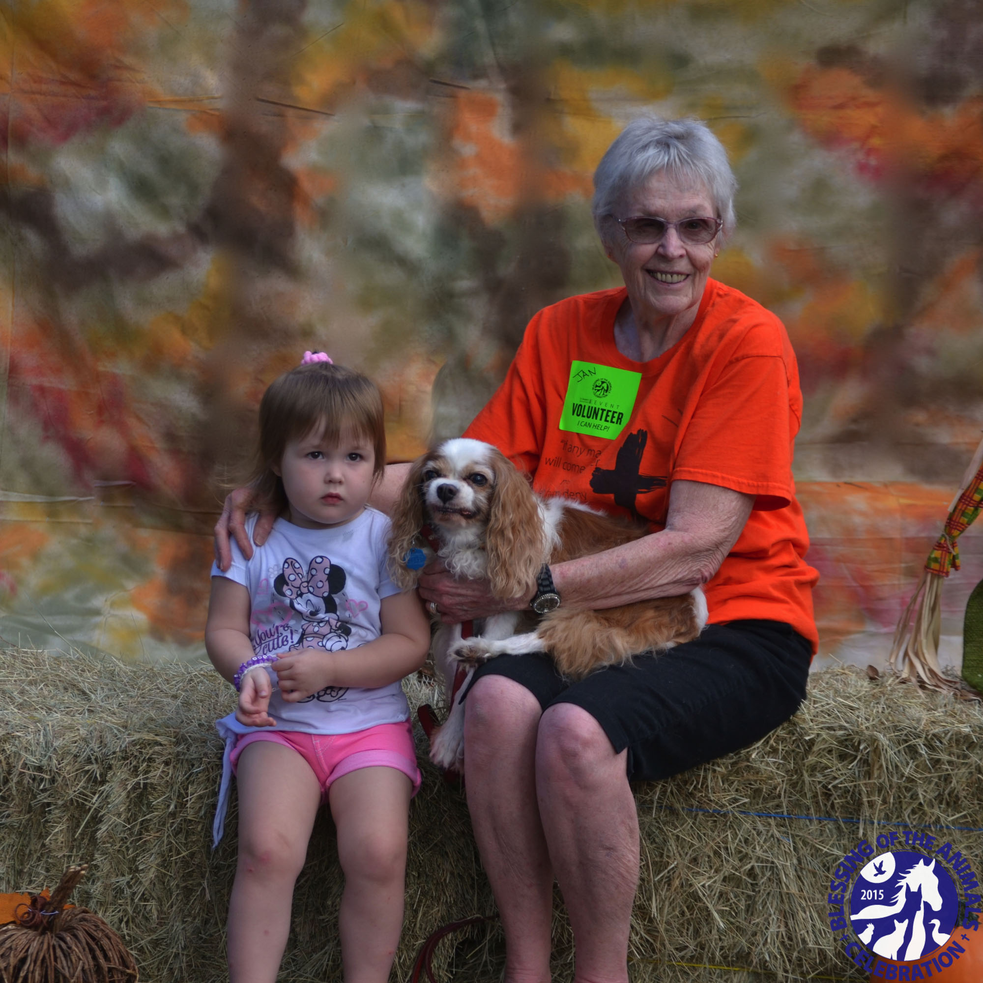 31st Annual Blessing of the Animals Festival - St Clement's