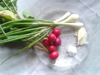 Radishes, onions, butter and salt.