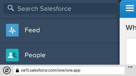 Example URL for Salesforce1 on Windows Phone: yourorg/one/one.app