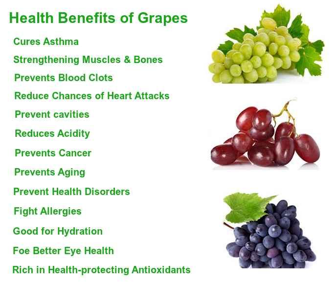 Grapes Benefits   Health Benefits of Grapes