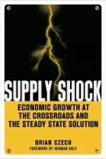Supply Shock Book