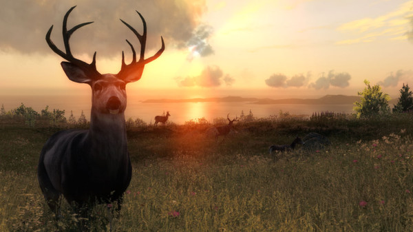theHunter Classic Screenshot