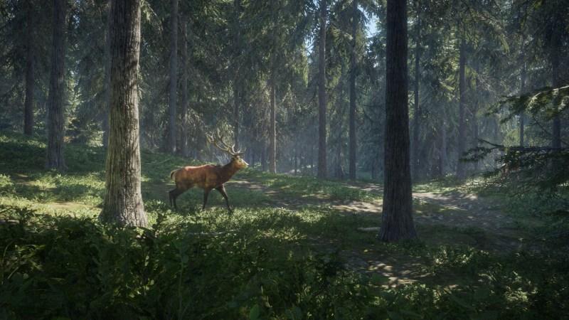 Znalezione obrazy dlazapytania: theHunter: Call of the Wild