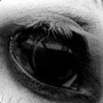 Profilbild von [STL GMBH&KG] fuchur.38
