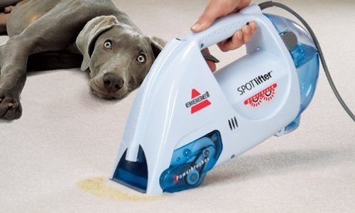 Best Small Bissell Carpet Shampooer  Steam Cleanery