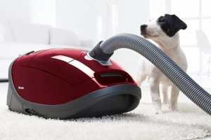 Home Carpet Cleaners for Pets