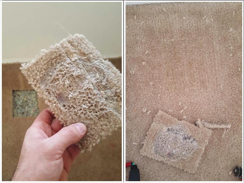 Carpet Repair in Richmond VA
