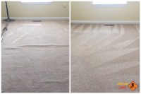 Mechanicsville carpet stretching - SteamLine carpet ...