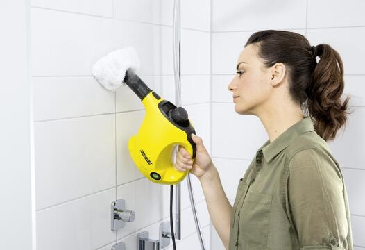 top 5 best steam cleaner for shower