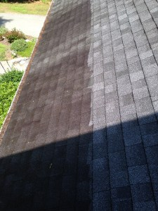 Clean your roof with bleach