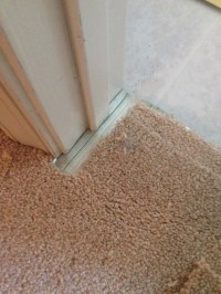 Carpet repair, pet damages and seam repair