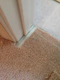 Carpet repair, pet damages and seam repair ...