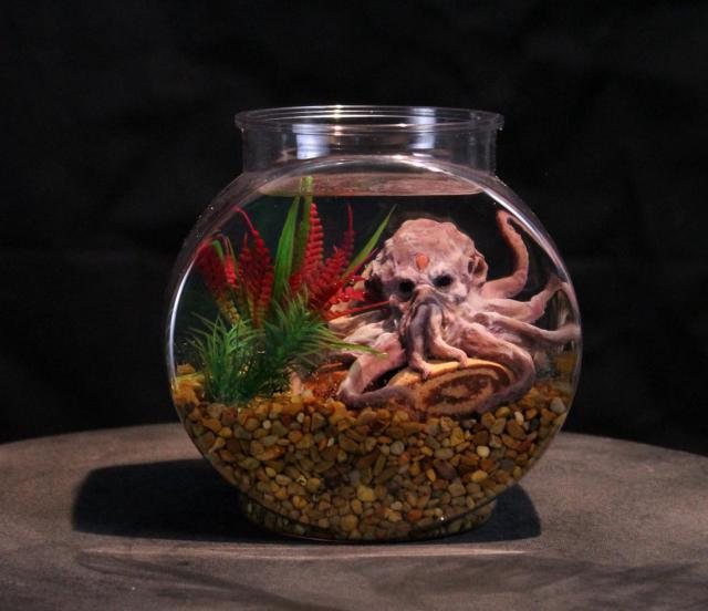 The Cthulhu Octopus Pet Aquarium. 2