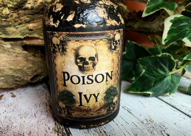 Steampunk Bottle. Poison Ivy. Poison Ivy Bottle. Gothic Bottle. Halloween Decor. Steampunk Decor. Steampunk Gift. Poison Bottle. Poison. 3