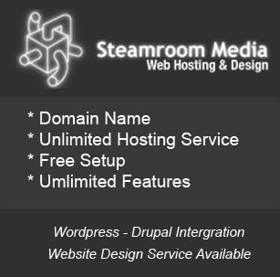 Website Design  Domain Name  Hosting  Steamroom Media