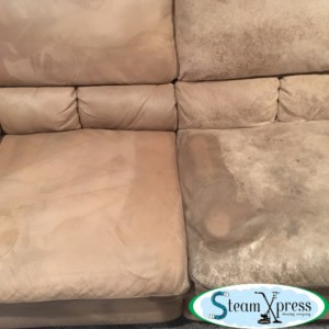 during steam xpress upholstery cleaning