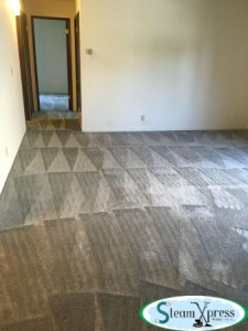 residential carpet cleaners