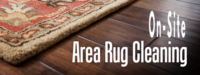 on-site area rug cleaners