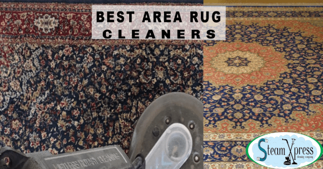 best area rug cleaner