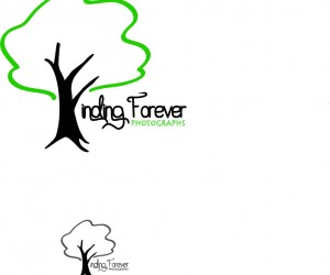 Finding Forever Photography Logo Concept