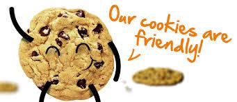 Steelasophical Cookie Privacy Policy