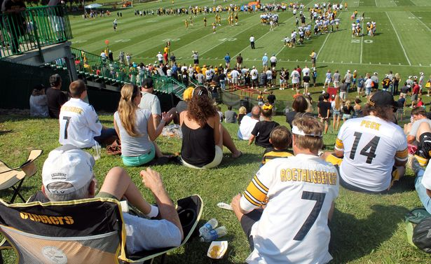 Training-camp-fans