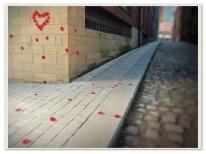Rose Petals. Sheffield S1