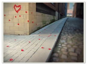 Rose Petals. Sheffield S1