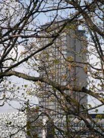 8. St Paul's Tower Sheffield 2017   © Little Bits of Sheffield   SP1020343