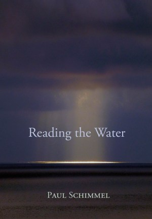 Reading the Water cover