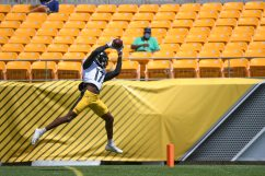 Pittsburgh Steelers wide receiver Deon Cain (17) trains at Heinz Field during the Steelers 2020 Training Camp, Tuesday, Aug. 18, 2020 in Pittsburgh, PA. (Karl Roser / Pittsburgh Steelers)