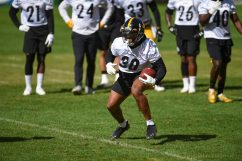 Pittsburgh Steelers running back Jaylen Samuels (38) trains at Heinz Field during the Steelers 2020 Training Camp, Friday, Sept. 4, 2020 in Pittsburgh, PA. (Caitlyn Epes / Pittsburgh Steelers)