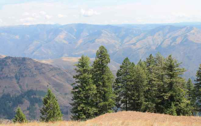 View from Hells Canyon Overlook
