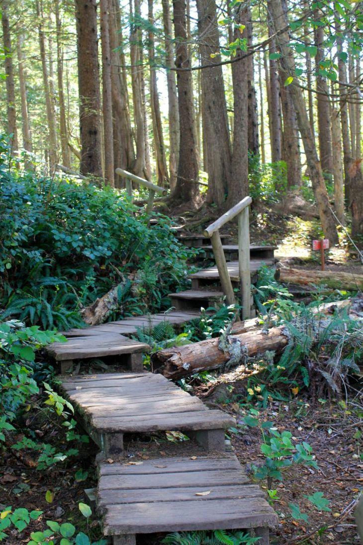 steps vert frame