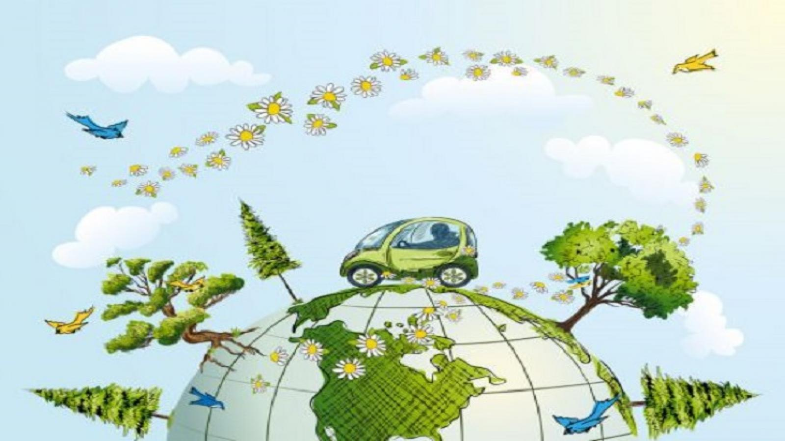 Read more about the article 10 Tips On How We Can Protect The Environment