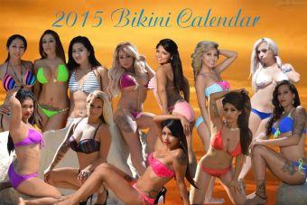 2015 calendar default pic