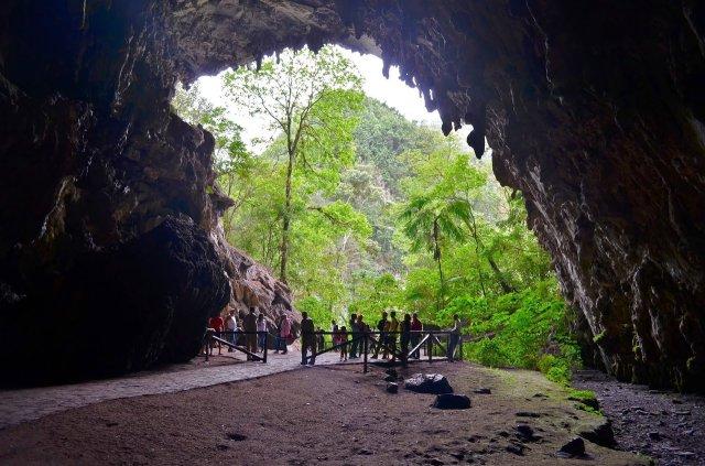 Resultado de imagen para parque nacional el guacharo
