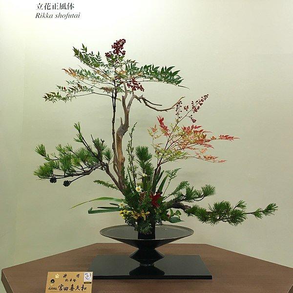 600px-2017_Ikenobou_Autumn_Tanabata_Exhibition_10.jpg