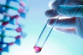 Тест ДНК на отцовство, родство по волосам
