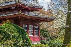 Japanischer Garten Leverkusen