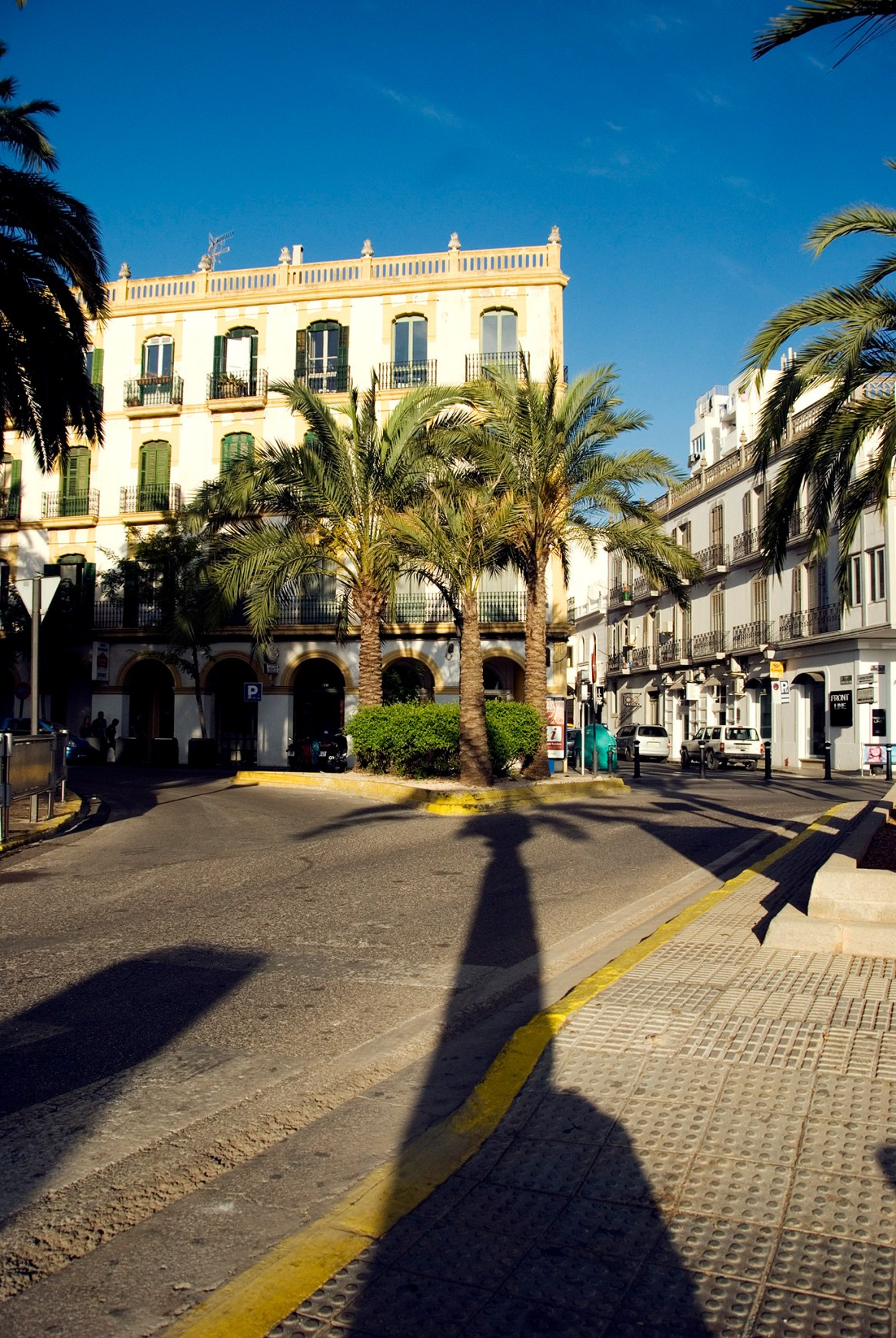 Piazza with palm trees and old buildings