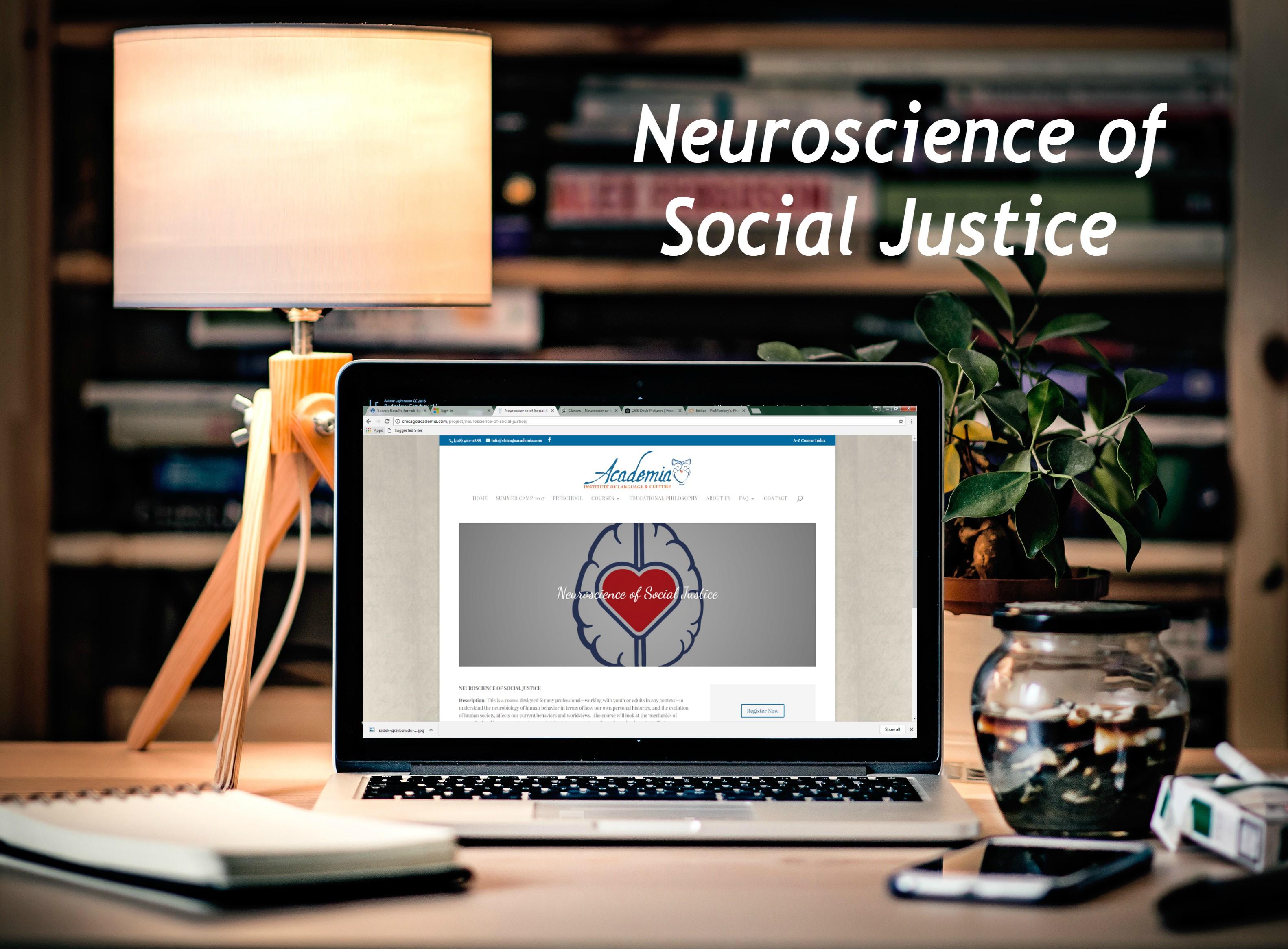 Neuroscience of Social Justice