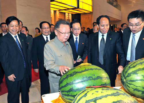 kim jong-il looking at watermelons