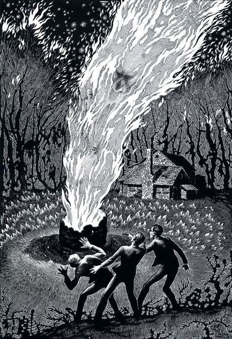 finlay illustration