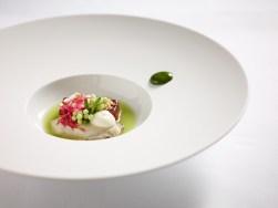 Aal Unagi und Auster mit Reisgel, Dashi-Tapioka, Wasabi und Apfel-Gurkensud von Kevin Fehling